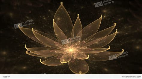 lotus water enlightenment or meditation and universe golden lotus water enlightenment or meditation and