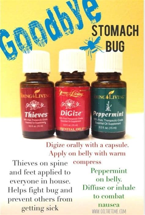 how to get rid of thieves in a room get rid of a stomach virus with essential oils living