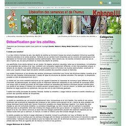 Detox Traduction by D 201 Tox Pour Se Soigner Pearltrees