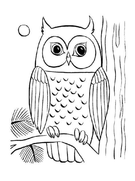 Owl Item Coloring Pages Related Adult Coloring Pages Owl Item