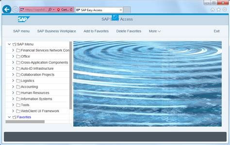 sap theme editor download enable belize theme for sap screen personas on web gui