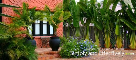 florida landscaping plants central florida s tropical