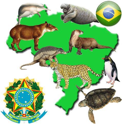 imagenes de animales y plantas de brasil animales extintos y en peligro de extinci 243 n en brasil
