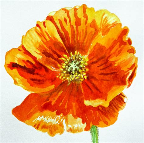 Duvet Cover Tutorial Poppy Painting By Irina Sztukowski