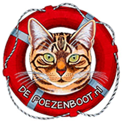 cat boat amsterdam opening times caturday archives texas tower 24 hour passport and visa