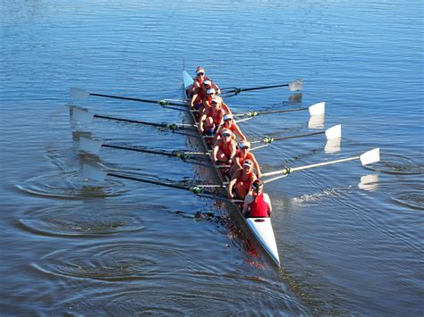 sculling boat companies rowing