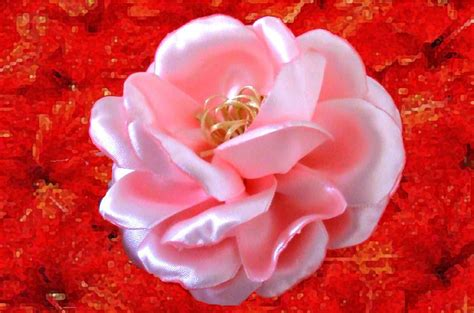 imagenes d rosas hermosas rosas hermosas semis naturales en cintas youtube