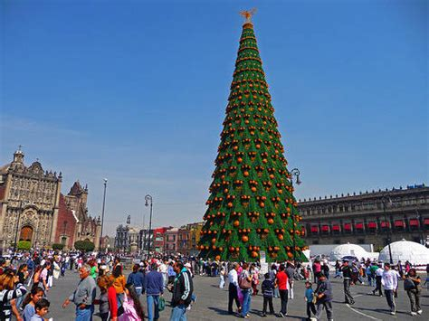 images of christmas in mexico mexico city erects world s largest christmas tree