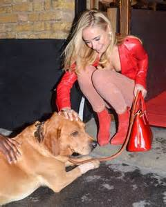 in the company of dogs kimberley garner company of dogs portrait exhibition 08 gotceleb
