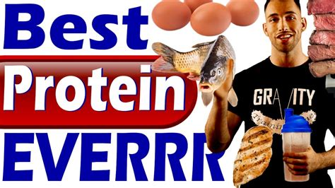 best protein to build and lose best protein to lose weight build get lean