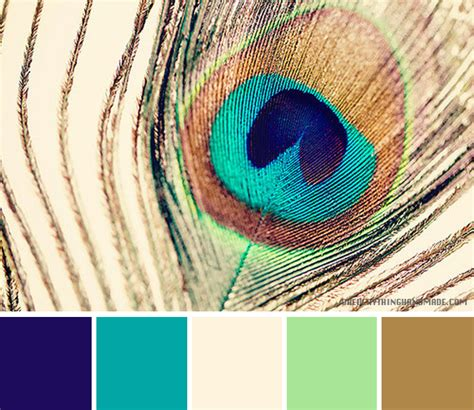 peacock feather colors color palette peacock feather