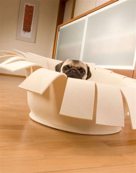 modern dog beds modern dog bed from pet interiors in high end quality