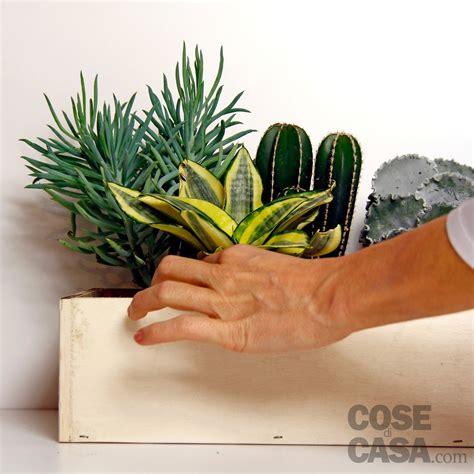 composizioni piante grasse in vaso piante grasse una composizione facile cose di casa