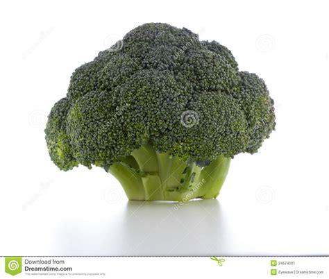 broccolo a testa testa broccolo immagine stock immagine di broccolo