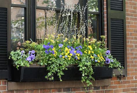 black window boxes 32 stunning flower box ideas arrangements