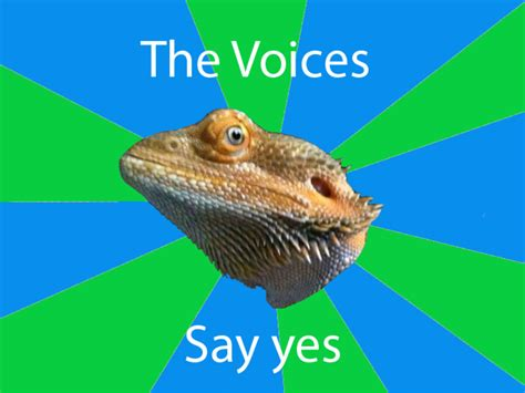 Laughing Lizard Meme - hehehe lizard memes