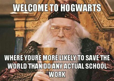 Hogwarts Meme - top hogwarts funny memes wallpapers