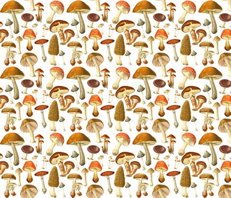fungicide for upholstery vintage botanical fungus sm fabric redbriarstudio