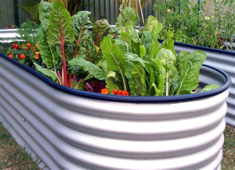 Raised Vegetable Gardening Free Raised Bed Vegetable Garden Plans Joeys Place My