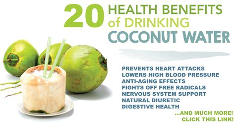 Coconut Water Detox Benefits by 20 Health Benefits Of Coconut Water Live