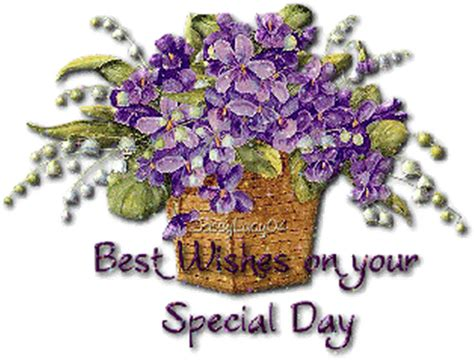 special day images best wishes on your special day desicomments