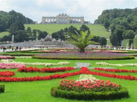 the gardens picture of schonbrunn palace vienna