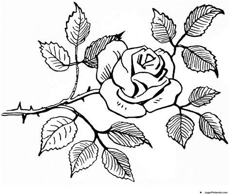 imagenes de rosas hermosas para colorear dibujos de rosas para colorear pintar e imprimir