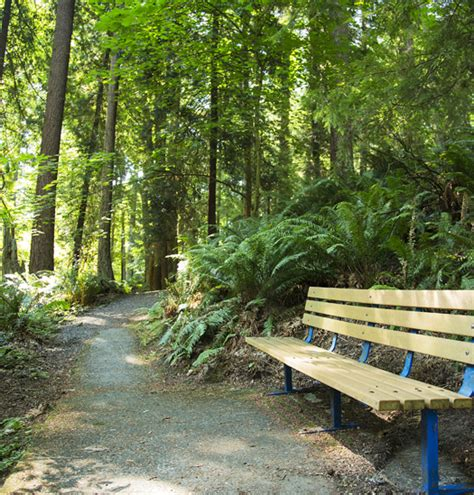forest park orienteering course everett wa official
