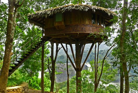 tropical treehouse vacation best wildlife resorts in kerala ixigo trip planner