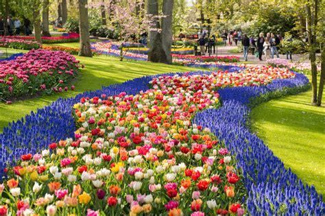 il giardino d europa parco botanico keukenhof tour di 5 ore da amsterdam