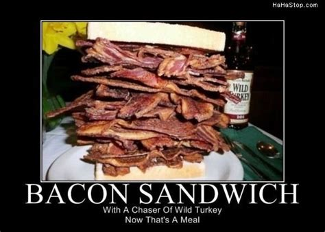Sandwich Meme - daily bacon page 12 in the news current events