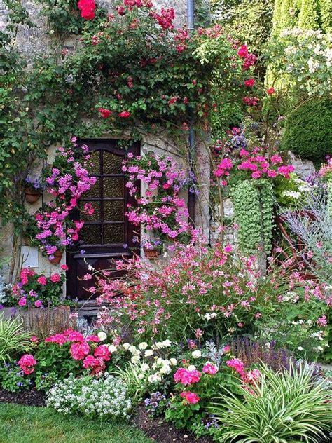garden glory spruce   flower bed   top