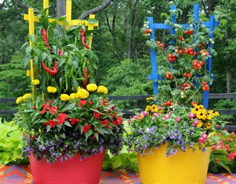 vegetable gardening in colorado container vegetable gardens make growing your own veggies