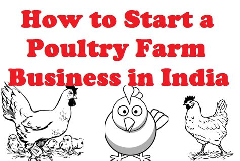 how to start home design business how to start a poultry farm business in india youtube