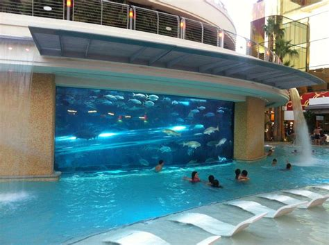 beautiful pools the world s nine most beautiful pools