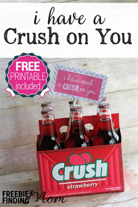 valentines gifts for your secret crush valentine s day diy gifts i a crush on you gift with