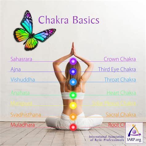 chakra basics learn  chakras    energetic