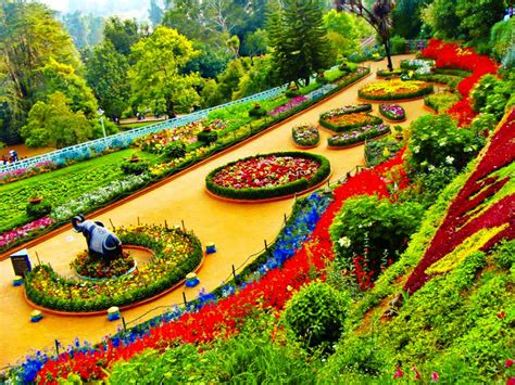 ooty botanical garden images ooty with coonor holidays
