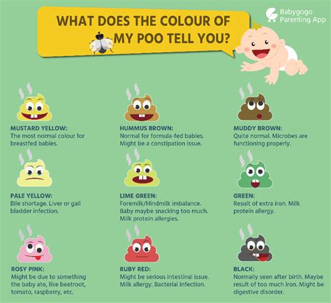 Baby Stools Color Chart by A Guide To Baby Type To Help Understand Your Baby