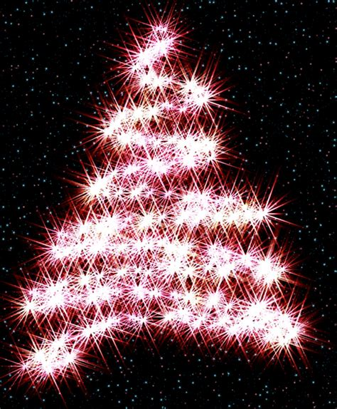 black tree with lights free stock photos rgbstock free stock images