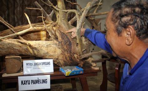 Tulisan Kayu I Allah tulisan tiongkok kuno dan lafal allah di akar kayu jati jogja