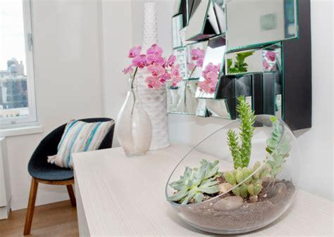 schöne große zimmerpflanzen pflegeleichte zimmerpflanzen 28 dekoideen f 252 r die