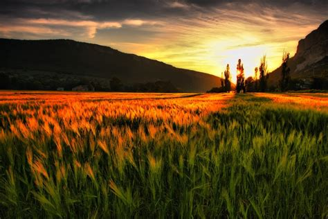 beautify worldwide cool wallpapers natural scenes