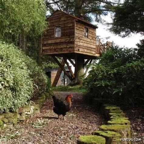 tree houses around the world funzug com amazing tree houses around the world tree house his treehouse feet