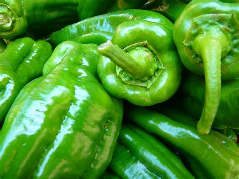 green cuisine free photo paprika vegetables green food free image