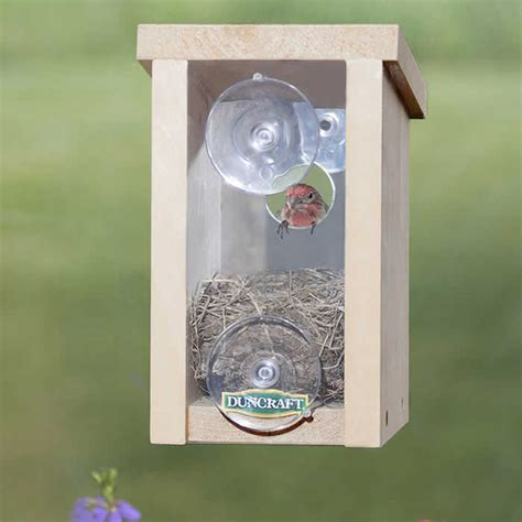 bird houses with viewing window bird house window 28 images southernstates songbird essentials window bird house