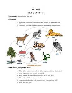Backyard Food Chain Sample Lesson Plan In Science Vi With 5 E S