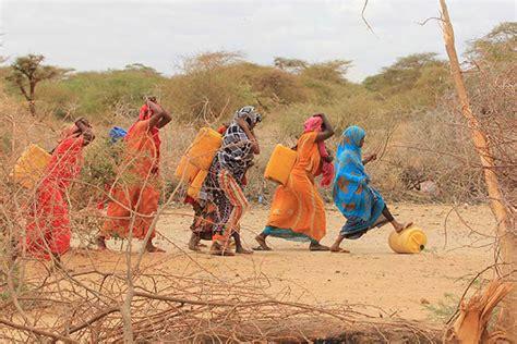 niños de somalia imagenes onu info somalie plus de 130 000 personnes d 233 plac 233 es