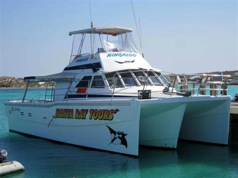 glass bottom boat coral bay ningaloo reef dive coral bay australia on tripadvisor