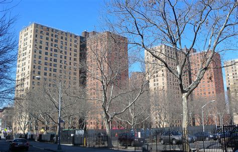housing nyc 489 new units of affordable elderly housing to rise on unused nycha land in brooklyn